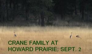 CRANE FAMILY 9-2-09