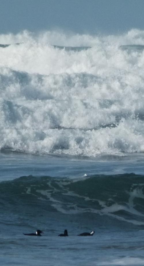 BIG WAVES (1280x1062)