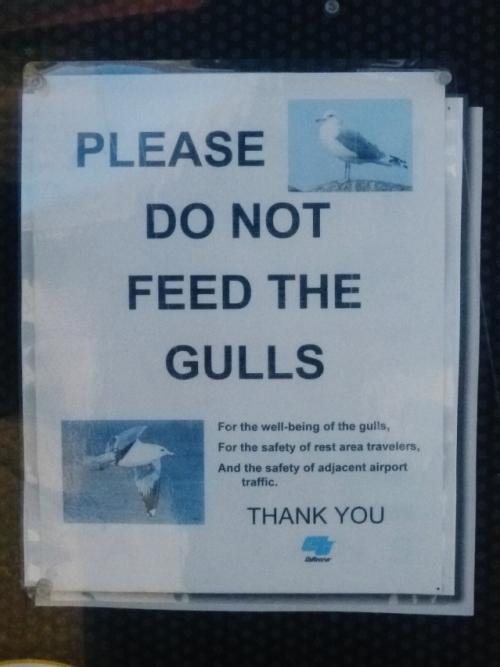 gull sign