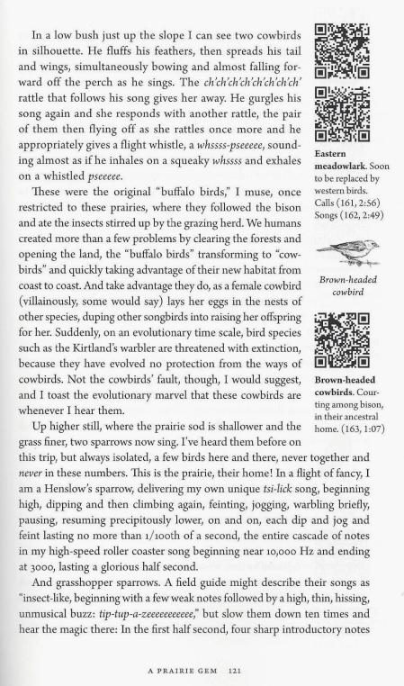 KROODSMA PAGE