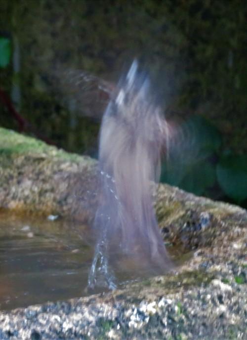 WCS BATH3