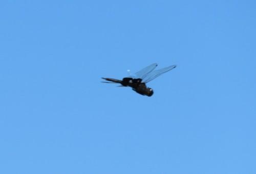 df in air