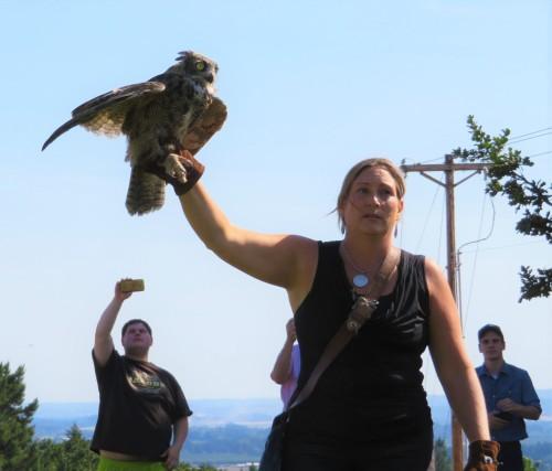 OWLL3