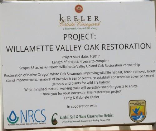 oak projct