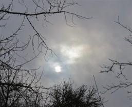 WAN SUN