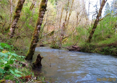 BAKER CREEK1