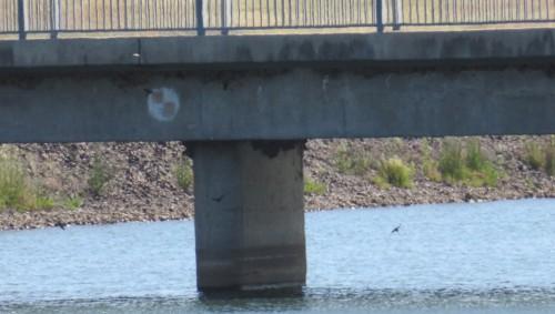cs-bridg2