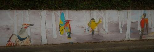 newport birds