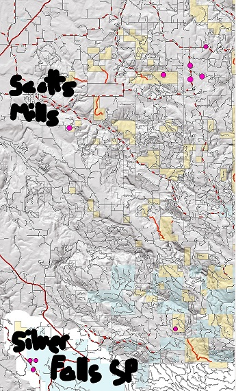 ggo map2_LI