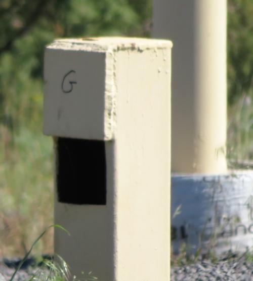 mbb nest box (2)