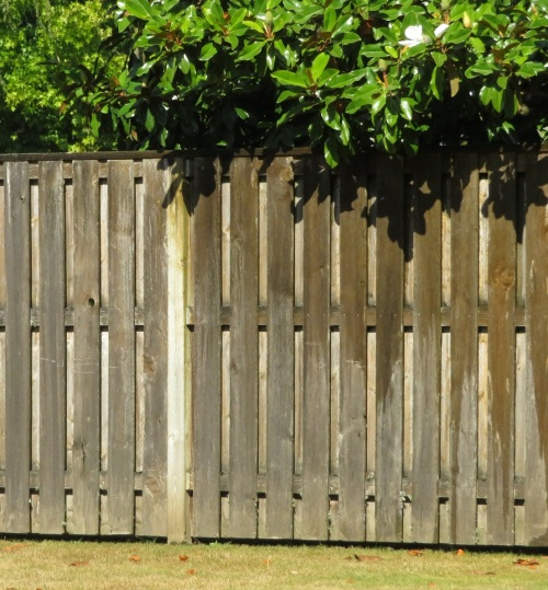rbn fence (2)