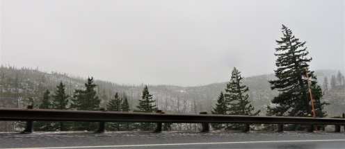 SANT SUMM