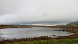 cov pond (2)